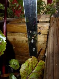 Steinschleuder Selber Bauen : bogen mauern anleitung holzbackofen ramster le ronde eingemauert seite 2 rundbogen mauern so ~ Eleganceandgraceweddings.com Haus und Dekorationen