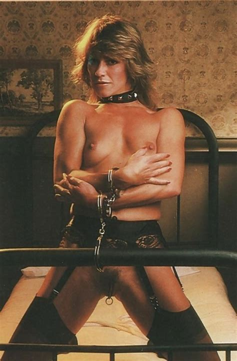 Marilyn In Gallery Marilyn Chambers The Perfect