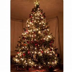 Weihnachtsbr uche in frankreich weinhelden for Weihnachtsbräuche in deutschland