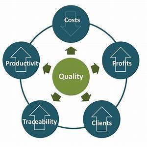 Quality Assurance  U2013 Holtec International