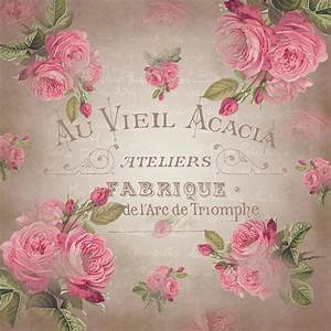 Shabby Chic Online Shop : shabby chic vintage french roses rose beige digital art by readyforyoga online shop ~ A.2002-acura-tl-radio.info Haus und Dekorationen