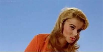 Ann Margret Film Vegas 1960s Las Viva