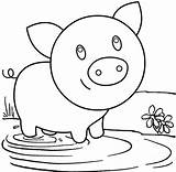 Pig Coloring Muddy Field Playing Mitraland Shark Precious Pigs sketch template