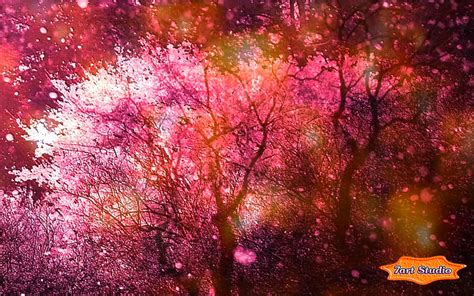 Cherry Blossoms Spring Wind Screensaver & Animated Desktop