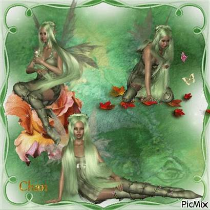 Fairies Three Picmix