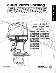 2004 Johnson Evinrude 200  225  250hp Direct Injection