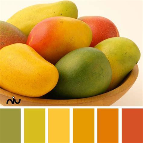 mango color palette via niu paint colors for exterior home flavoryoursummer mangotango
