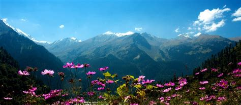 manali manali travel guide tourist places tourist guide