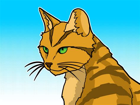 warrior cat how to emulate a warrior cat 9 steps wikihow