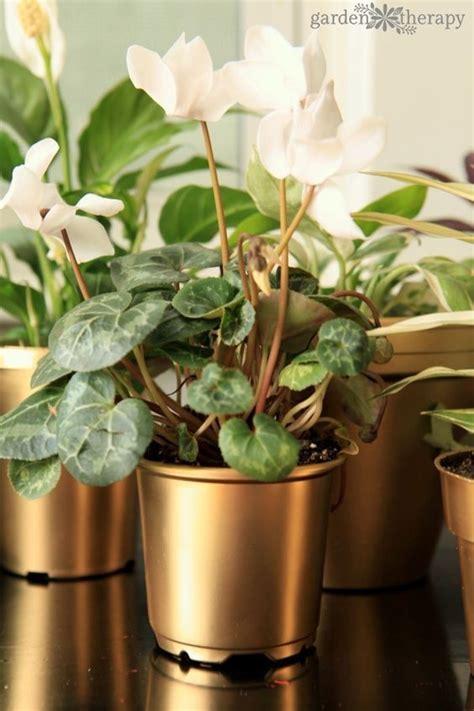 gilty pleasure gold painted flowerpots hometalk