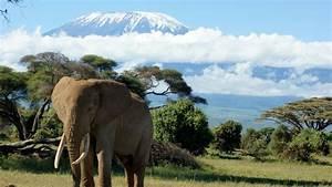 Mount Kilimanjaro Stunning Wallpaper – Travel HD Wallpapers