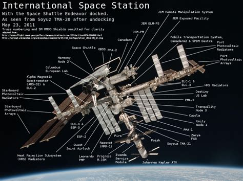 Diagram of NASA Space Station (page 3) - Pics about space