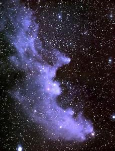 Witch Head Nebula  U2013 Ic 2118  U2013 Constellation Guide