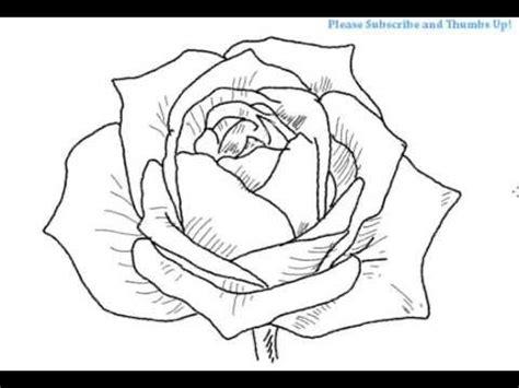 draw  open rose flower yzarts yzarts youtube