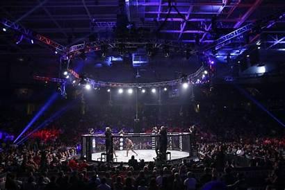 Bellator Mma Lindsey Vanzandt Dublin Fight Fighters