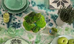 Terrario: il fascino dei giardini sotto vetro CASAfacile