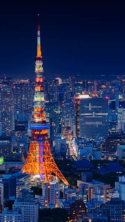 tokyo tower japan night cityscape  pure