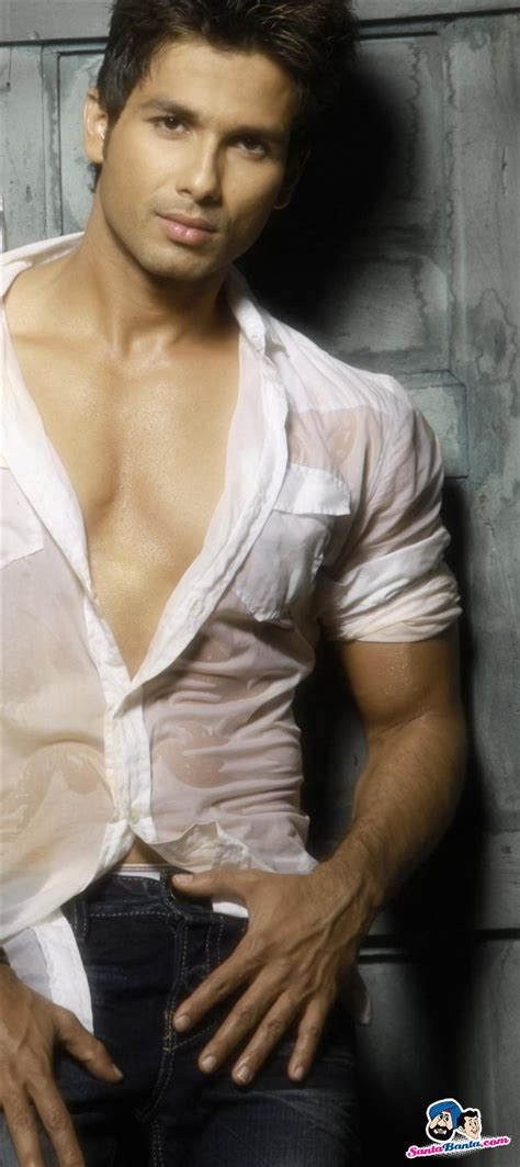 shahid kapoor image gallery picture
