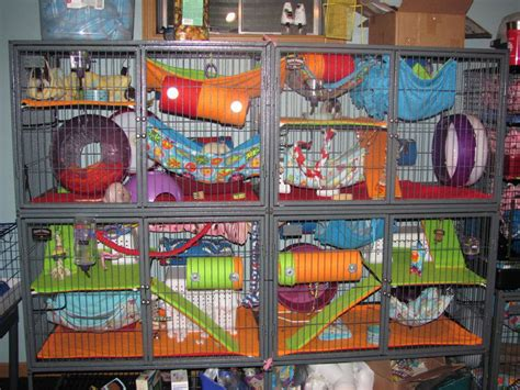 double wide ferret nation cage  pet accessory