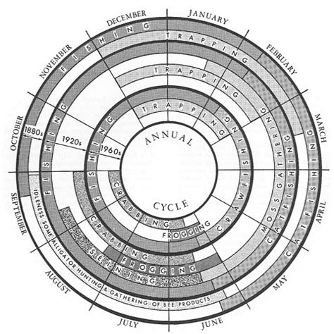 charts constructing  annual cycleradial diagram