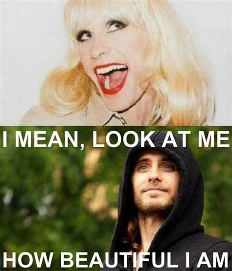 Jared Leto Meme - jared leto rayon he kills me he s a damn hot man and a hella gorgeous woman jared leto 30
