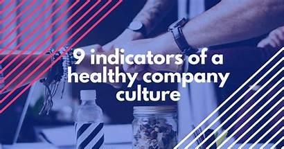 Culture Healthy Company Medium Elizabeth Grace