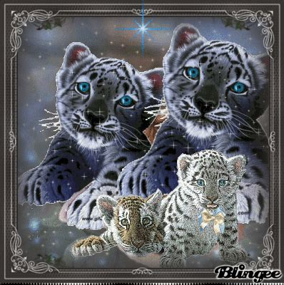 decorations crosswordgif tiger glitter graphics this quot tigers quot picture was created using the blingee free