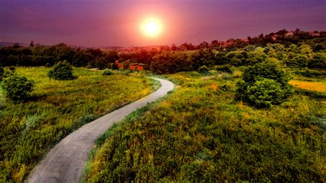 Hd Wallpaper Northern Lights Wallpaper Pathway Bright Sun Summer Hd Nature 2654