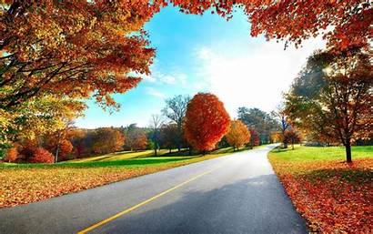 Autumn Nature Landscapes Trees Background Desktop Resolutions