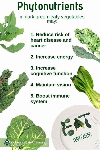Benefits Vegetables Leafy Greens Eating Health Dark