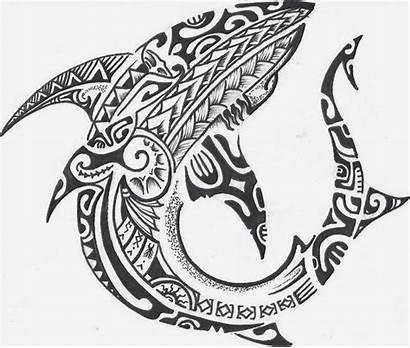Maori Shark Tattoo Ink Tattoos