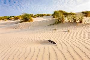 Urlaub Mit Hund Am Meer Italien : urlaub mit hund am meer 3 tage im nordseehotel wilhelmshaven ~ Kayakingforconservation.com Haus und Dekorationen