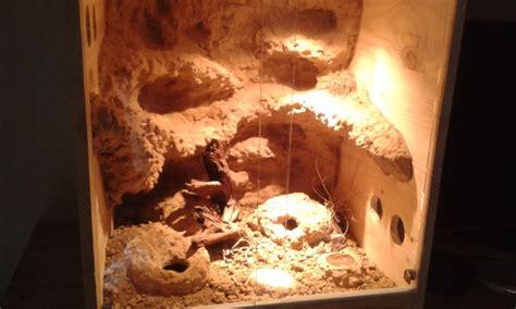 decor fond terrarium desertique terrarium desertique decor de fond fait maison vente de mat 233 riel le monde des reptiles