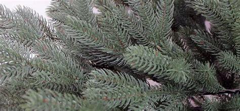künstlicher weihnachtsbaum spritzguss test spritzguss weihnachtsbaum1 k 252 nstlicher weihnachtsbaum