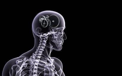 Medical Desktop Backgrounds Screen Anatomy Science Medicine