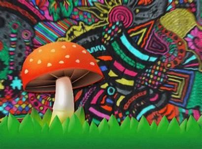 Trippy Psychedelic Mushroom Gifs Psilocybin Brisa Stoner