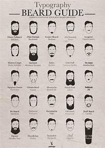 Movember Beard Styles  U00bb Chartgeek Com