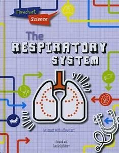 Human Respiratory System For Ks1 And Ks2 Children