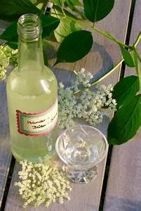 Holunderlikör Mit Wodka : beschwipste holunder bl ten holunder fliederbeere elderflower pinterest schnaps ~ Watch28wear.com Haus und Dekorationen