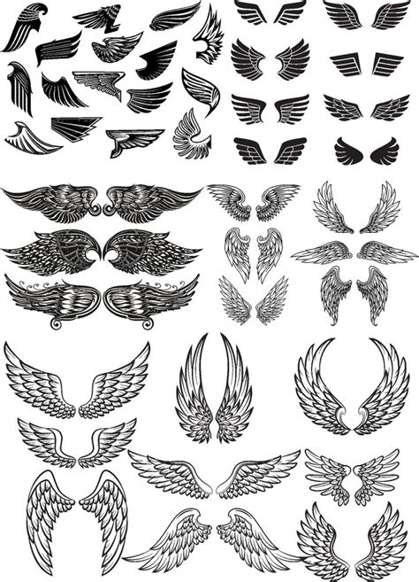wings vector set  vector cdr  axisco
