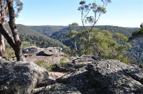 springwood blue mountains australia
