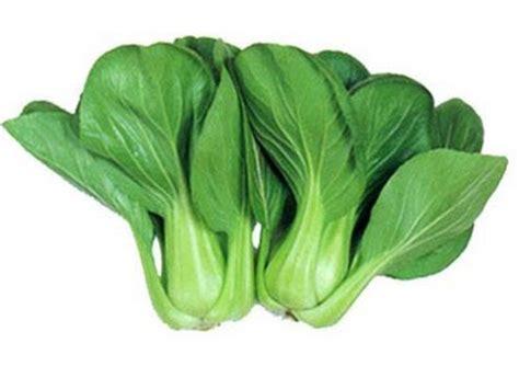 ana mursyidah khasiat  kelebihan sayur sawi