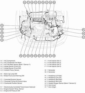 2005 Scion Xb Headlight Wiring Diagram