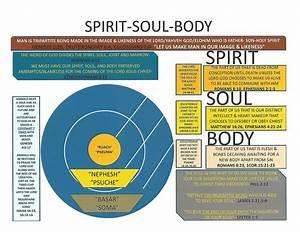 Chart  U2013 Spirit  Soul  U0026 Body  U2013 Precious Faith Bible Church