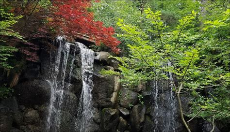 Japanese Gardens Rockford by Five Midwest Gardens That You Need To Visit Travel With Sara