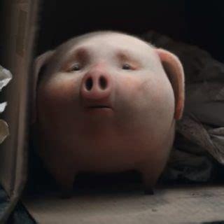 santander pig commercial commercial song