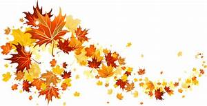 Fall Leaves Transparent Picture Gallery Yopriceville