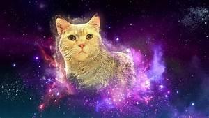 The Amazing Cat Nebula - YouTube