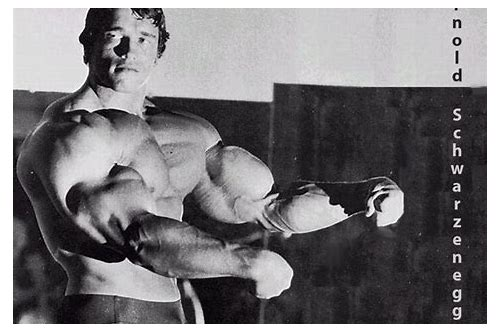 arnold schwarzenegger bodybuilding videos free download