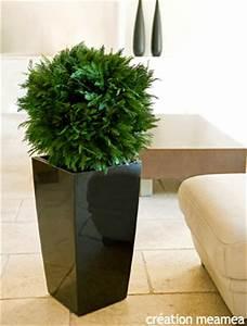 Fausse Plante Verte : une plante 100 naturelle sans entretien 24 10 2008 dkomaison ~ Teatrodelosmanantiales.com Idées de Décoration